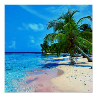Tropical Island With Palm Trees And Sandy Beach Poster