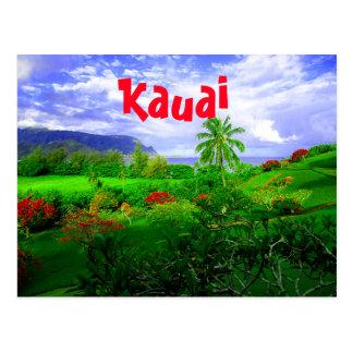 Tropical Kauai Hawaiian Island Postcard