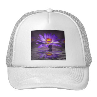 Tropical Lily Reflections Cap