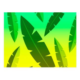 tropical lime postcard