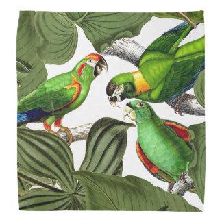 Tropical Macaw Parrot Bird Wildlife Animal Bandana