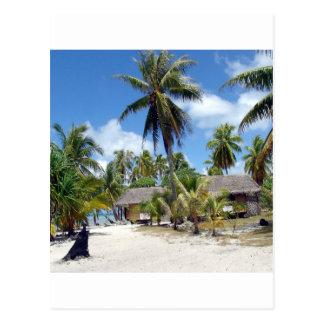 Tropical Maldives Palm Grove Shacks Postcard