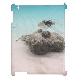 Tropical Maldives White Sand Lagoon Coral Fish iPad Case