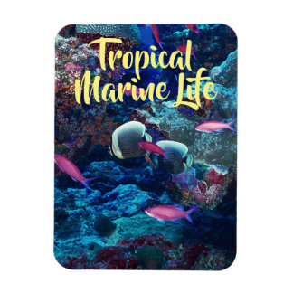 Tropical Marine Life Magnet