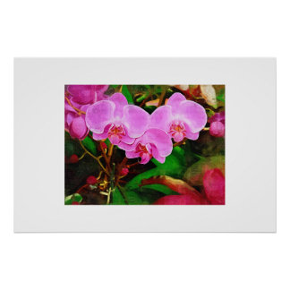 Tropical Orchid - Afternoon in the Greenhouse Poster
