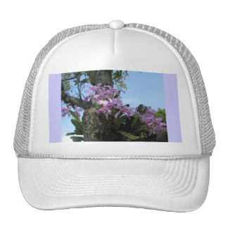 Tropical orchid flower girl hat