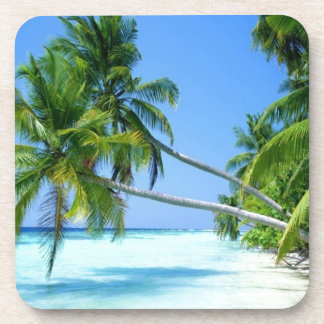 Tropical Palm Beach! Coaster