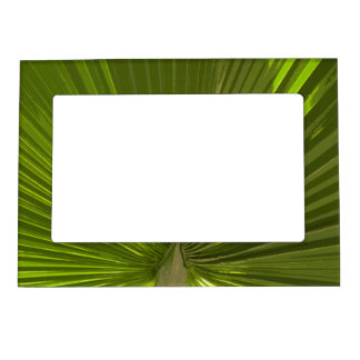Tropical Palm Frond Magnetic Picture Frame