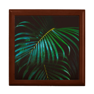 Tropical Palm Leaf Calm Green Minimalistic Gift Box