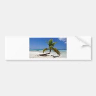 tropical palm tree bumper sticker