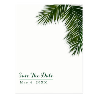 Tropical Palm Tree Leaf Wedding Save the Date Postcard