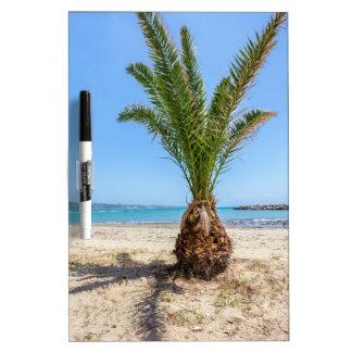 Tropical palm tree on sandy beach dry erase board