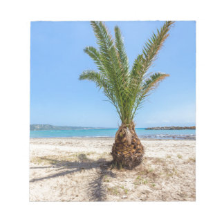 Tropical palm tree on sandy beach notepad