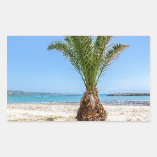 Tropical palm tree on sandy beach rectangular sticker