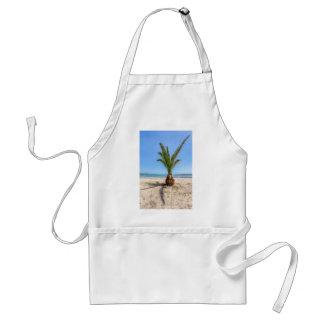 Tropical palm tree on sandy beach standard apron