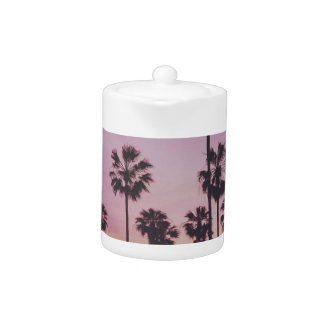 Tropical Palm Trees Miami Los Angeles Venice