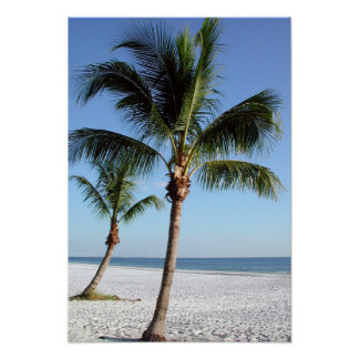 Tropical Palm Trees on the beach Poster