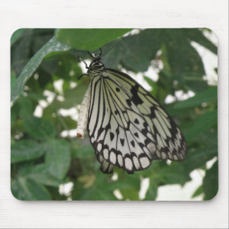 Tropical Paper Kite Butterfly Mousepad
