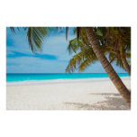 Tropical Paradise Beach Posters