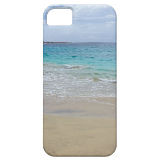tropical paradise case for the iPhone 5