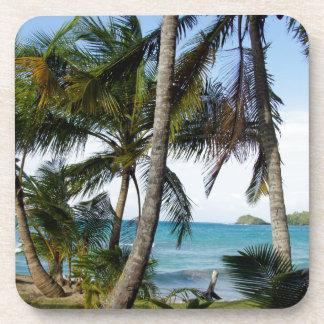 tropical paradise coaster