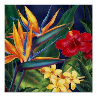 Tropical Paradise Hawaiian Floral Posters