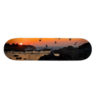 Tropical Paradise Water Beach Sunset Birds Destiny 21.6 Cm Old School Skateboard Deck