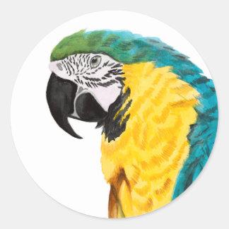Tropical Parrot Bird Classic Round Sticker