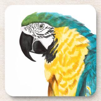 Tropical Parrot Bird Coaster