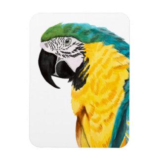 Tropical Parrot Bird Magnet