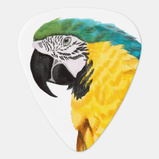 Tropical Parrot Bird Plectrum