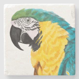 Tropical Parrot Bird Stone Coaster