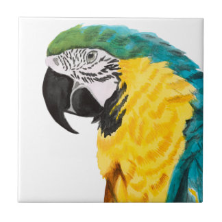 Tropical Parrot Bird Tile
