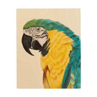 Tropical Parrot Bird Wood Print