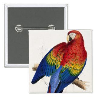 Tropical Parrot Button