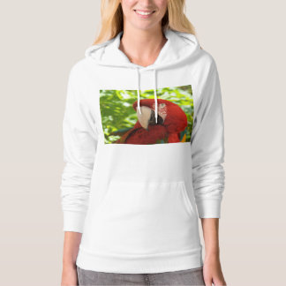 Tropical Parrot Women's Comfortable Hoodie