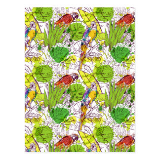 Tropical Parrots Postcard