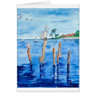 Tropical Pelicans Card