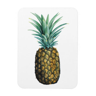 Tropical Pineapple Watercolor Magnet