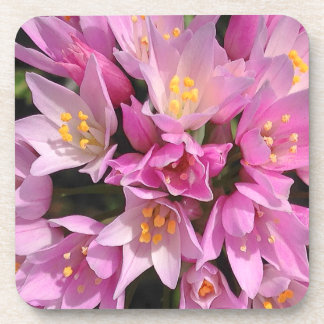 Tropical Pink and Yellow Flowers Beverage Coaster