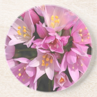 Tropical Pink and Yellow Flowers Coaster