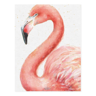 Tropical | Pink Flamingo Postcard