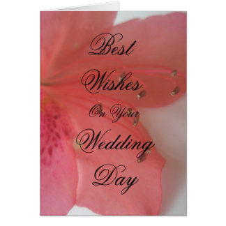 Tropical Pink wedding Greeting Card