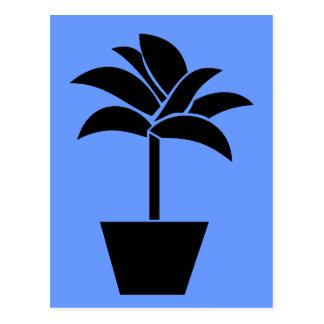 Tropical Plant In Pot Postcard