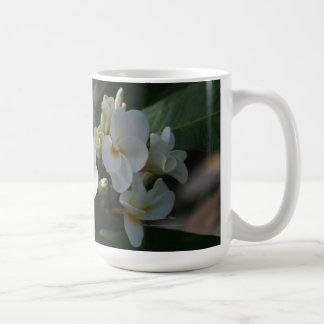 Tropical Plumeria Cup