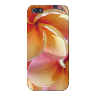 Tropical Plumeria Flowers  iPhone 5 Cases
