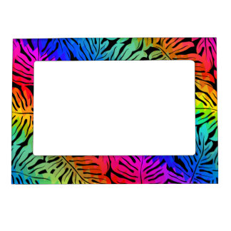 Tropical rainbow magnetic picture frame