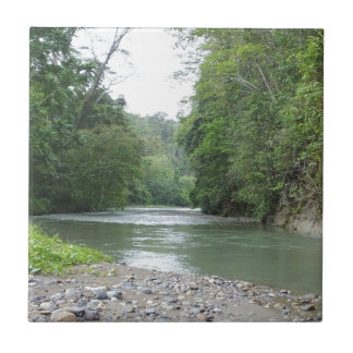 Tropical Rainforest and River Small Square Tile