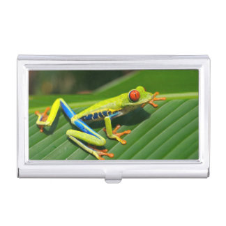 Tropical rainforest green red-eyed tree Frog Business Card Holder