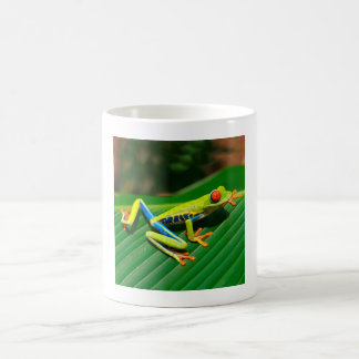 Tropical rainforest green red-eyed tree Frog Coffee Mug